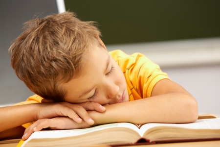 lad: Portrait of cute lad sleeping with his head on open book Stock Photo