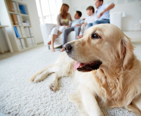 familia: Retrato de mascota linda tendido en el suelo con una familia de cuatro descansando en su casa