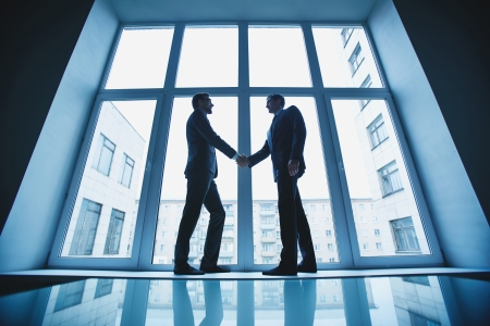 happy business team: Photo of successful businessmen handshaking after striking deal