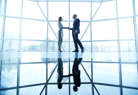 Image of successful businessman and businesswoman handshaking after striking deal on background of window