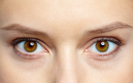maquillage: Macro image of human eyes Stock Photo