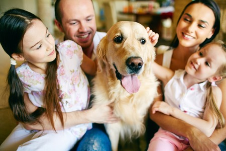 people   lifestyle: A young friendly family of four cuddling their pet Stock Photo