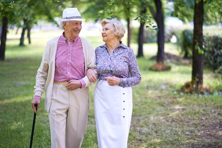 Happy seniors talking while taking a walk in the park photo