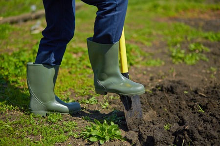 Image of male farmer digging in the garden 스톡 콘텐츠