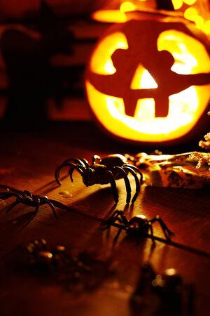 antichrist: Halloween spiders on jack-o-lantern