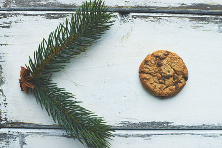 One biscuit and green conifer on white wooden background photo