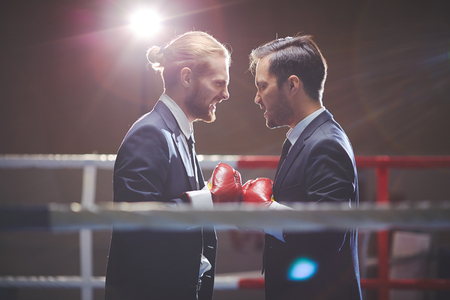 Aggressive business boxers looking at one another photo