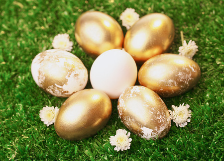 Background of white and golden eggs photo