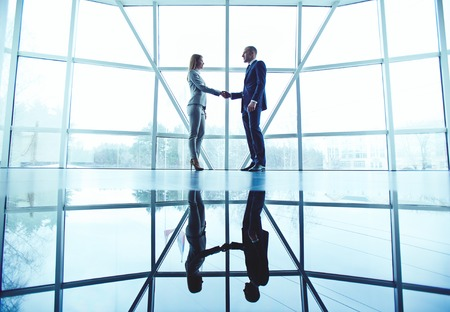 business partner: Young business partners handshaking after making agreement