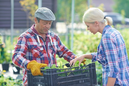 looking after: Two gardeners looking after young plants Stock Photo