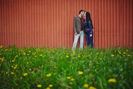 amorous: Amorous couple in casualwear kissing on green lawn