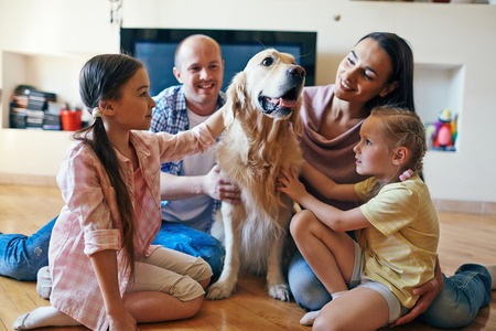 happy families: Pet surrounded by family of four sitting on sofa Stock Photo