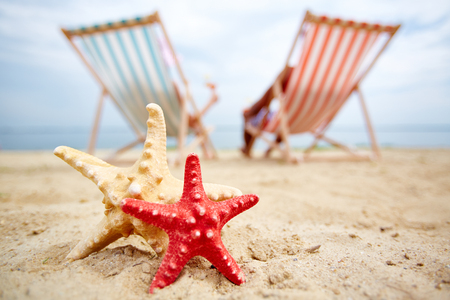 sandy beach: Two sea stars on sandy beach with sunbathers on background Stock Photo