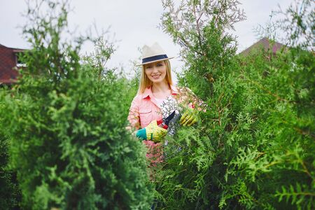 thuja: Happy female gardener looking at camera while taking care of thuja
