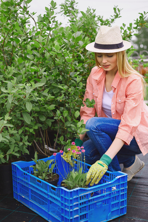 replanting: Modern farmer in hat replanting flowers Stock Photo