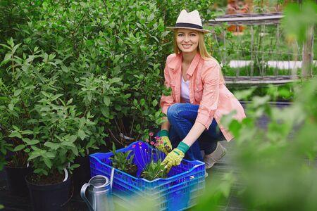 replanting: Smiling gardener looking at camera while replanting garden flowers