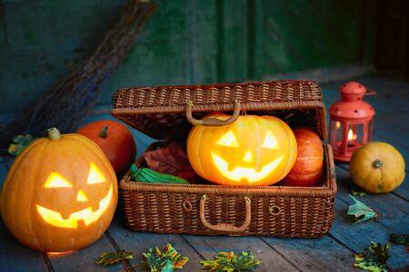 wattled: Jack-o-lanterns in wattled suitcase