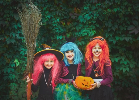 witch on broom: Halloween witches with pumpkin and broom looking at camera on background of green foliage