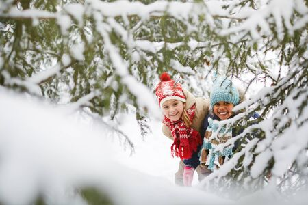 winter people: Friendly girls in winter park looking at camera out of fir-tree branch