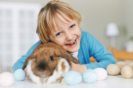 carefree: Cute boy with Easter rabbit looking at camera