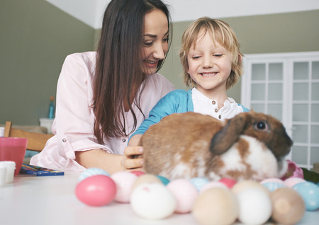 boy lady: Happy young woman and her son playing with Easter rabbit
