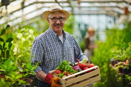 successful man: Happy mature man holding fresh vegetables