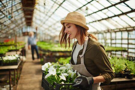 carrying: Young farmer carrying white petunias