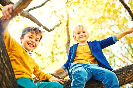 niño trepando: Bajo el ángulo de los niños en edad escolar dos a explorar el parque, trepar a los árboles y sentado en lo alto de entre los manojos, mirando felizmente abajo la cámara y disfrutar de tiempo de juego en el día de otoño caliente