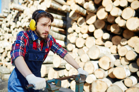 Lumberjack Working on Cutting Site Stock Photo