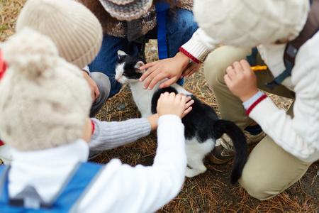Kids Petting Cat Outdoors