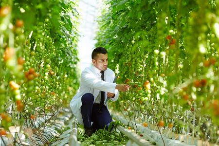 Agriculteur travaillant Banque d'images - 87945631