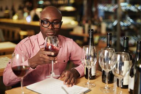 Evaluation of wine Stock Photo