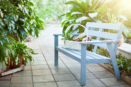 Light blue wooden bench and basket with provisions prepared for picnic or romantic date in the garden
