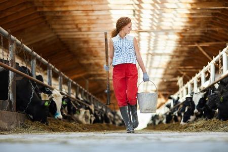 Kettlefarm worker Stockfoto