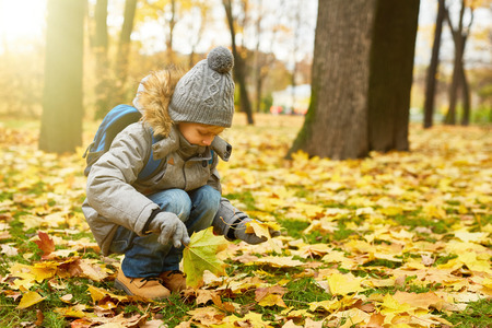 Picking up leaves