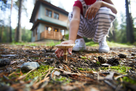 Close-up of unrecognizable kid crouching on forest ground and picking mushroom during weekend in countryside cottage