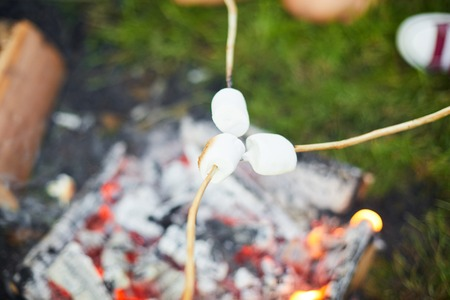 Marshmellows on sticks