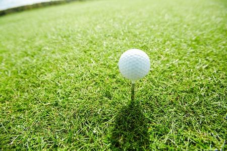 Golf ball on tee Banco de Imagens