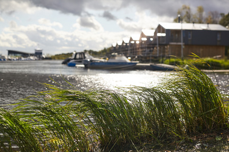 Tall green grass swinging in wind on shore, motorboats moored to pier in background