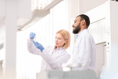 Chemists examining liquid
