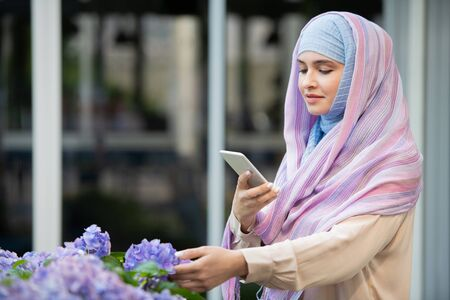 Young Arabian female in hijab photographing nice blue hydrangea