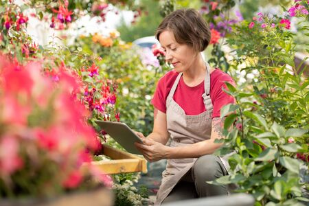Young female florist searching in the net for new sorts of garden flowers