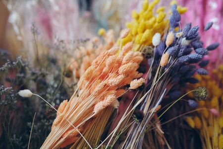 Close-up of beautiful dried grass flower bunches placed in flower Stock Photo