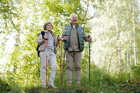 Mature active man and woman with trekking sticks standing among green trees Stock Photo