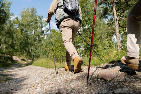 Active man with trekking sticks and backpack moving down forest road 写真素材