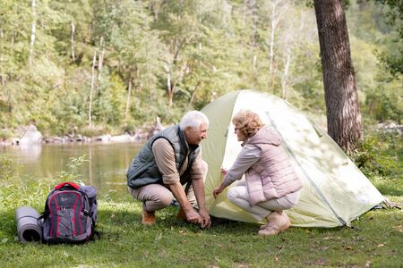 Mature hikers in activewear putting tent on green grass by riverside