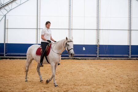 Mujer joven en jeans ajustados y camisa polo blanca sentada en la parte trasera del caballo de carreras Foto de archivo