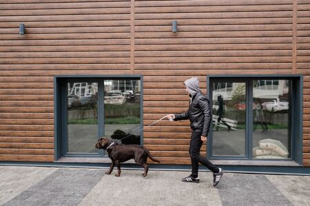 Cute brown labrador with leash pulling his owner while both moving along wooden wall of modern cottage Archivio Fotografico - 132136911