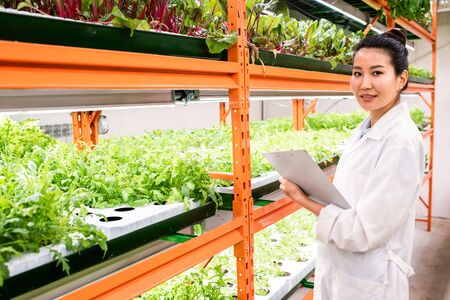 Young confident female biologist studying new sorts of horticultural plants