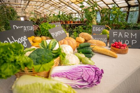 Close-up of organic food counter with various vegetables and bread for sale at farm shop